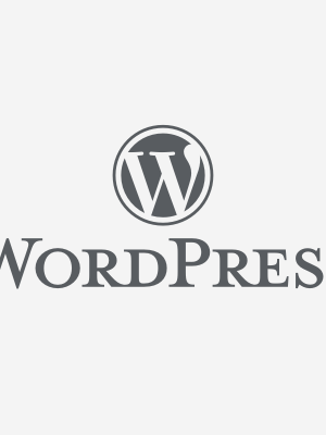 Wordpress.com Review